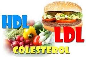 4 consejos saludables para reducir el colesterol malo - Alimentos prohibidos para el colesterol malo ...